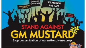 image-for-GM-Mustard-India-Petition-Story-pavanrchawla.wordpress.com